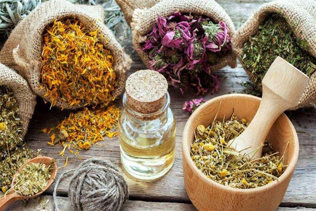 بينها إكليل الجبل والميرمية.. أفضل 8 أعشاب طبيعيّة لتقوية الذاكرة - الإمارات نيوز