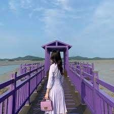 تمتع بسحر الجزيرة الأرجوانية في كوريا الجنوبية